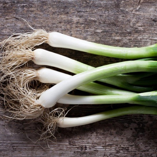Spring Onions Love the Crunch